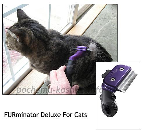 пуходерка для британской кошки